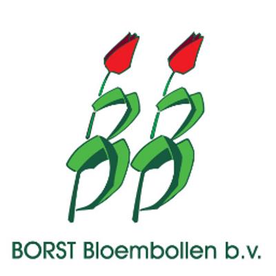 Borst-Bloembollen